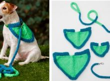 Flashy knitted dog leash   the knitting space