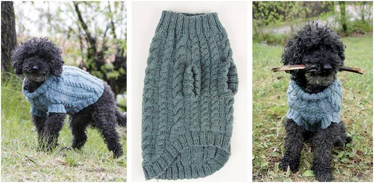 Small Dog Jumper Knitting Pattern