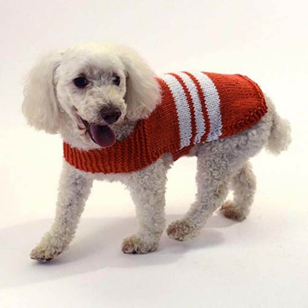 2bcd5fe629aef6 Knit Collegiate Dog Sweater  FREE Knitting Pattern