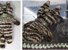 purr pluscious knitted kitty | the knitting space
